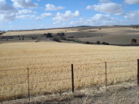 DustWatch Australia: wind erosion modelling for sustainable land management